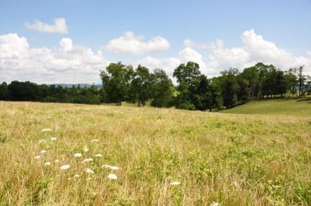 15 Highland Green Farm Tour