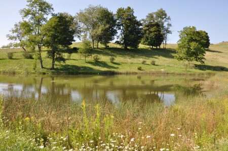17 Highland Green Farm Tour