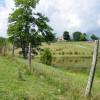 18 Highland Green Farm Tour