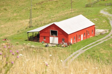 21 Highland Green Farm Tour