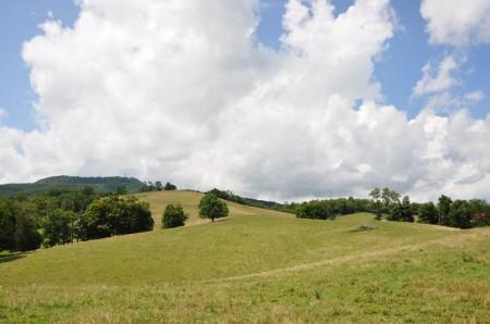 53 Highland Green Farm Tour