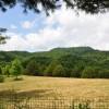 78 Highland Green Farm Tour