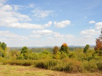SUNRISE KNOLL <br /> RICH HOLLOW RD, LEWISBURG <br /> 15.36 +/- ACRES