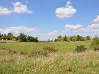 WHISPER ESTATES </br> 5.79 +/- ACRES, LEWISBURG