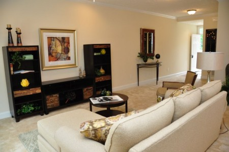 White Gate - Townhome Tour  (9)