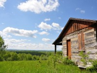 LEVELS END CABIN & 130 +/- ACRES