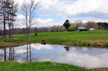 Hinkle Farm Tour 045