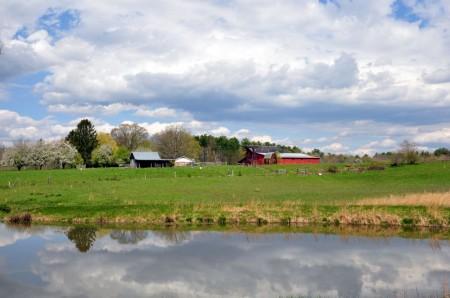 Hinkle Farm Tour 050