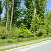 02 GREENBRIER PINES LOT 9 TOUR RESIZE