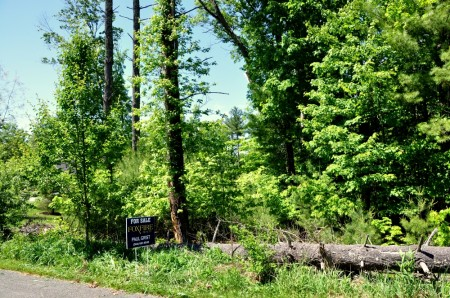 16 GREENBRIER PINES LOT 9 TOUR RESIZE