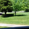35 Pinewood Drive 037