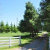35 Pinewood Drive 048