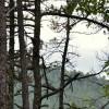 84 River Rock Retreat Tour