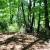 GREENBRIER PINES LOT 15A TOUR RESIZE (12)