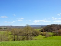 BUFFALO CREEK FARM 141 +/- ACRES - DAWSON, WV