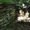 Falling Springs Forest Tour 018