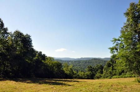 Ridge View Forest Tour 001