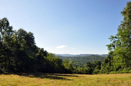 Ridge View Forest Tour 007