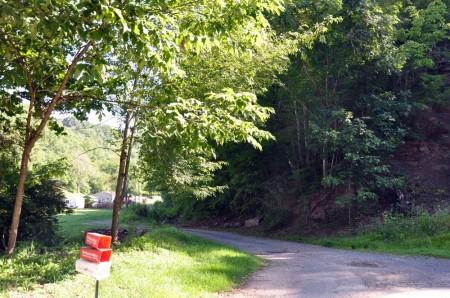 Ridge View Forest Tour 016