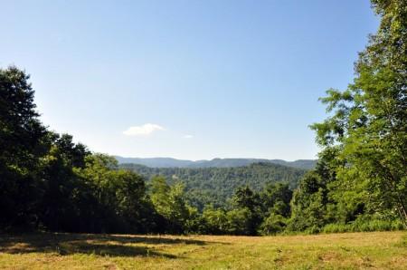 Ridge View Forest Tour 020