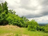 BIG BOULDER FOREST - 47.85 +/- ACRES - Overlook at Greenbrier