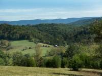 SPRINGFIELD FARM </br> 145 ACRES