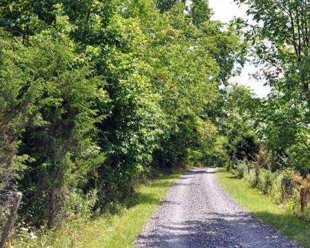 Springfield Farm Tour 009