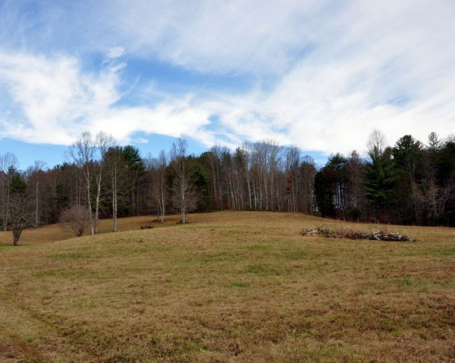 Foxfire Realty Dotson Forest Land Farms Amp Country