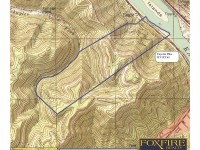 EAGLE FOREST </br> 334.48 Acres +/-