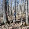 Flynn Creek Forest 014