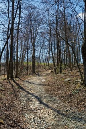 Harmony Ridge 055