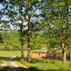 James Farm Tour 015
