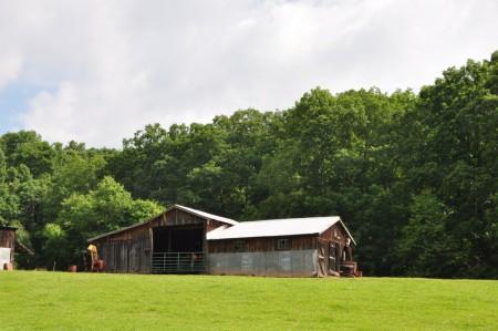 Cold Spring Farm Tour 041