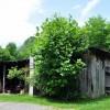 Swell Mountain Retreat Tour 029
