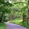 Swell Mountain Retreat Tour 044