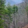 Trappers Ridge Retreat Tour 067