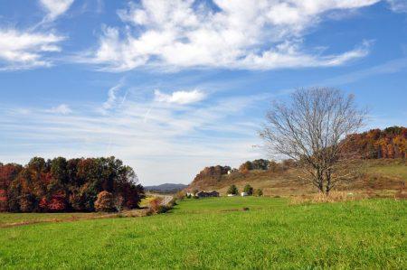 dawson-farm-tour-009