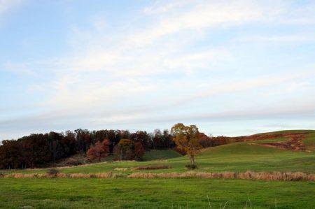 dawson-farm-tour-024