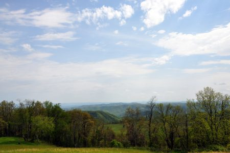 elk-knob-forest-tour-004