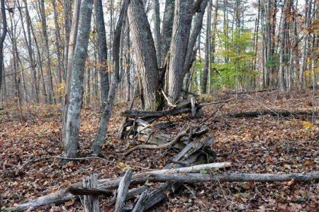 Wolf Creek Retreat 062