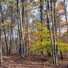 Wolf Creek Retreat 067
