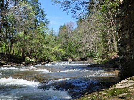 Roaring River 020