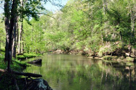 Roaring River 022