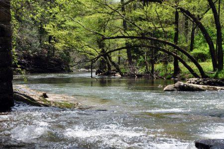 Roaring River 023