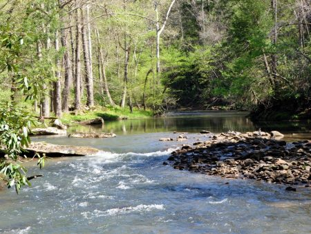 Roaring River 032