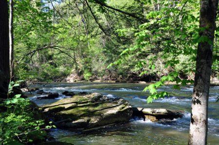 Roaring River 033