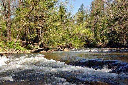 Roaring River 034