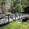 Roaring River 040