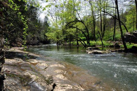 Roaring River 042