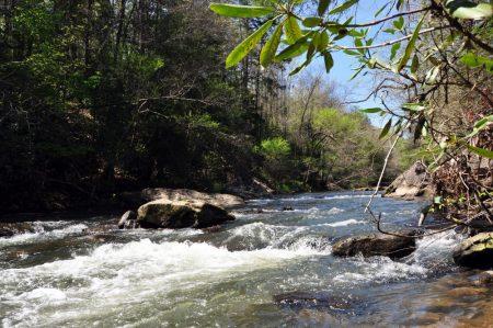 Roaring River 043